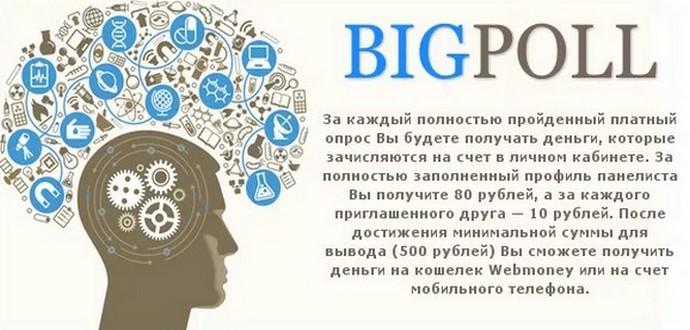 Проверенный опросник для заработка BigPoll